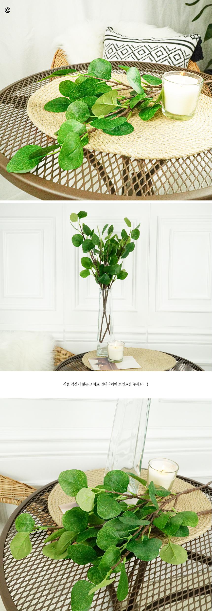 고르소 유칼립투스 조화 장식 인테리어 나무5,900원-고르소인테리어, 플라워, 조화, 웨딩조화바보사랑고르소 유칼립투스 조화 장식 인테리어 나무5,900원-고르소인테리어, 플라워, 조화, 웨딩조화바보사랑