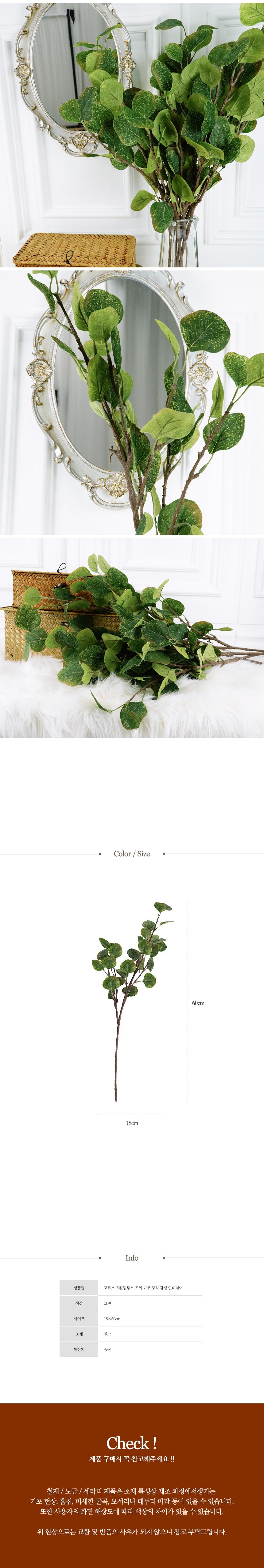 고르소 유칼립투스 조화 나무 장식 감성 인테리어4,400원-고르소인테리어, 플라워, 조화, 웨딩조화바보사랑고르소 유칼립투스 조화 나무 장식 감성 인테리어4,400원-고르소인테리어, 플라워, 조화, 웨딩조화바보사랑